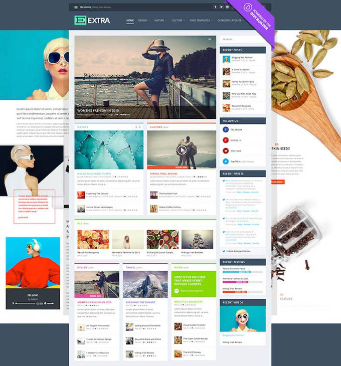 Extra Beste Wordpress themes [2021]