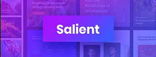 Salient Theme review - Snelste premium theme?